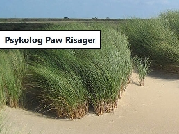 https://www.psykolog-pawrisager.dk/stress/ website