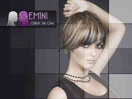 http://www.gemini-hair.co.uk/ website