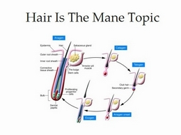 http://hairisthemanetopic.com/ website