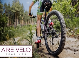 https://www.airevelobearings.com/ website