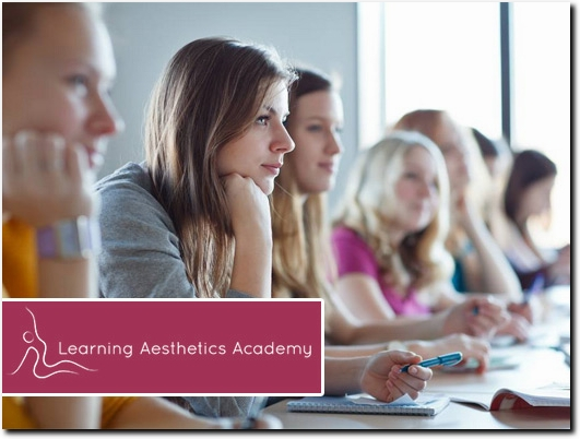 http://learningaestheticsacademy.com/ website